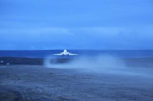 Falcon Taking Off - Gallery